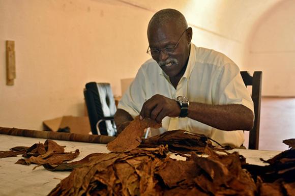 Famoso-tabaquero-cubano-José-Castelar-Cairo-Cueto-creador-del-tabaco-más-largo-del-mundo.